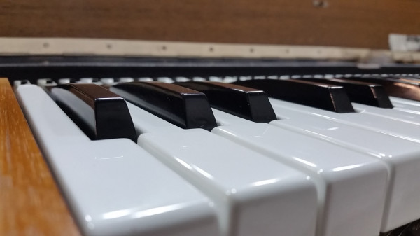 Clavinet d6 Keys Closeup